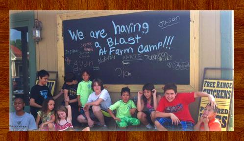 Farm Camp (Ages 4+)    Session 1 (June 5 - 7)