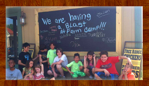 Farm Camp (Ages 4+)  | Session 1 (June 5 - 7)