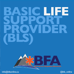 Basic Life Support (Formerly Healthcare Provider/HCP)