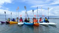 Kayak Hire - 1 hour