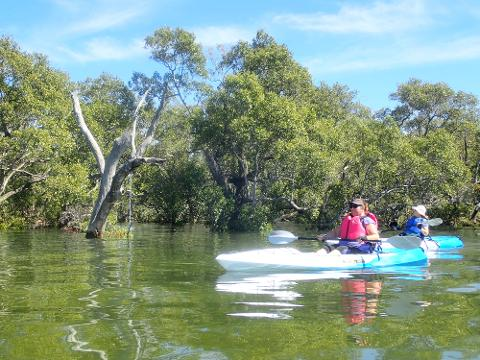 Wellington Point to Raby Bay Kayak Tour
