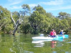 Wellington Point to Raby Bay Kayak Tour