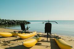 Ormiston Mangroves Water Bike Tour