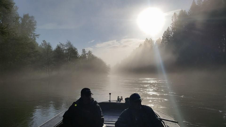 Chehalis river fall salmon online booking for guided for Chehalis river fishing