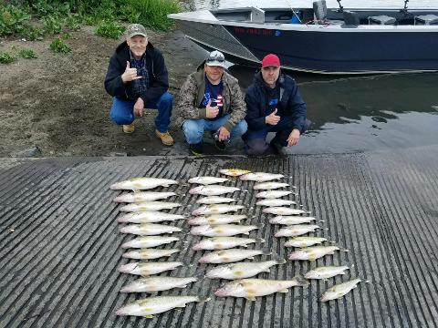 Moses Lake Walleye