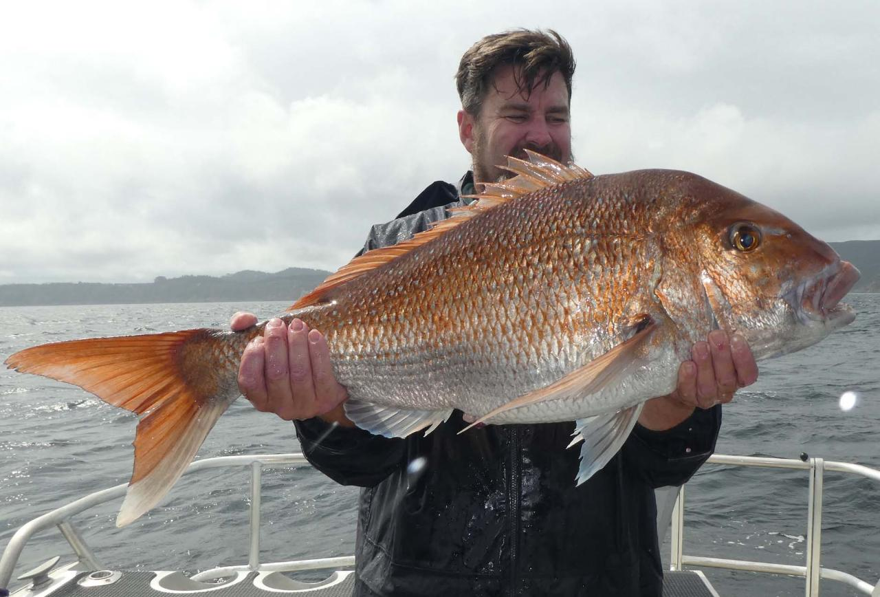 Private Fishing Charter (4 Hours)