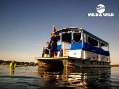 Private Manatee Group Tour - Exclusive Encounter - Crystal River