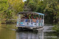 Wildlife Encounter and River Cruise - 1.5 hour - Crystal River