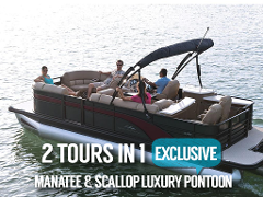 Gift Certificate - The Ultimate Voyage - Scallop hunt and Manatee Snorkel - 6 Hour VIP Adventure - Crystal River