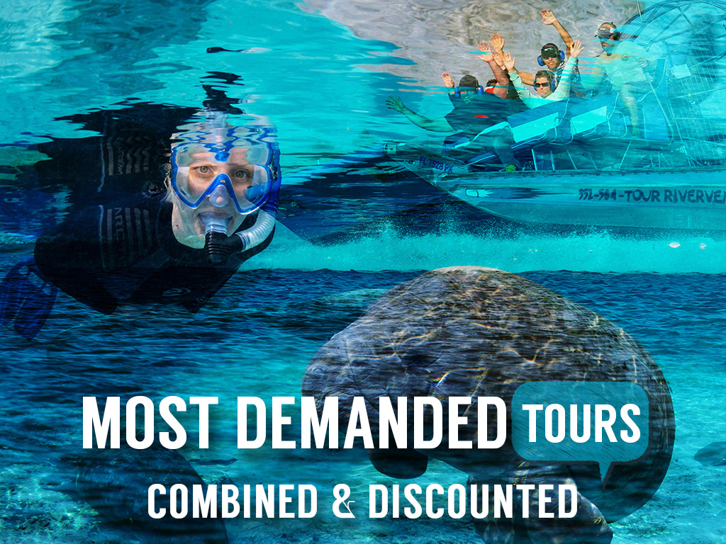 THE DIAMOND DUO - Semi-Private VIP Manatee Snorkel Tour with a Gulf and Dolphin Quest Air boat Adventure