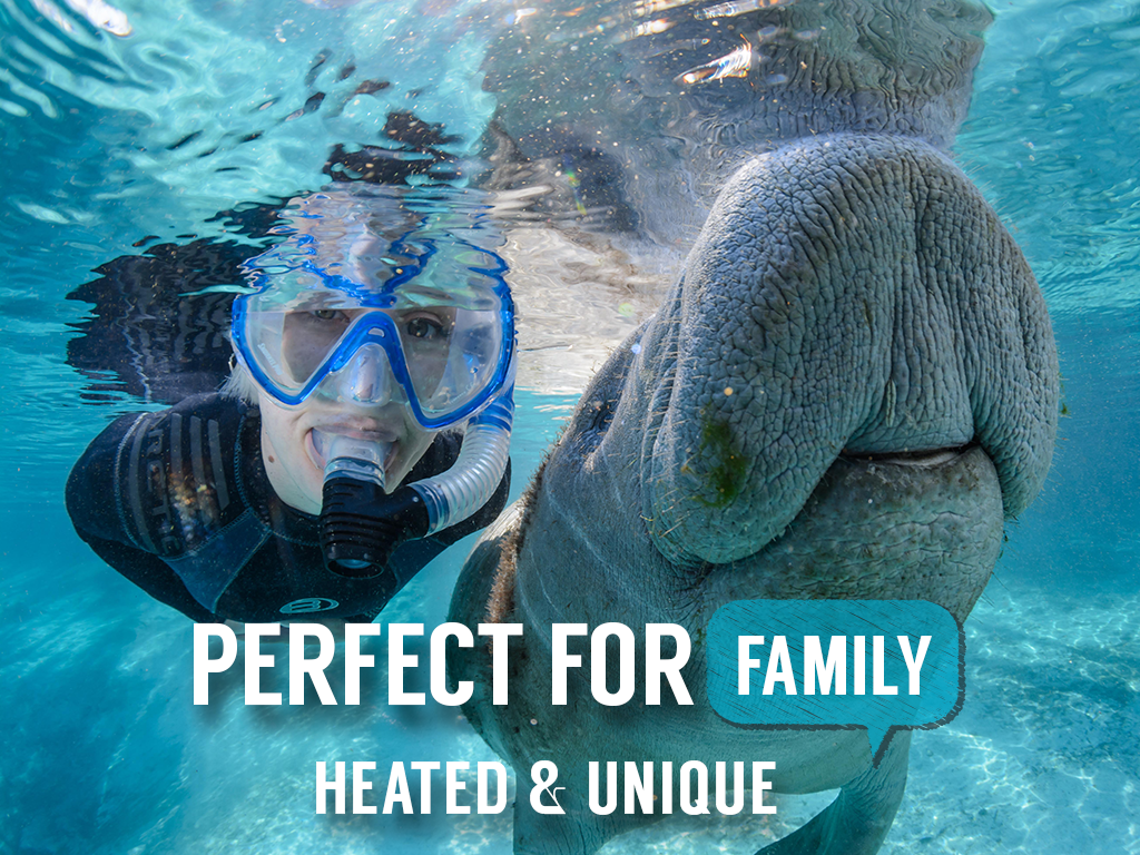 Private Houseboat Manatee Tour - Intimate Encounter (4 hr) - Crystal River