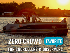 Sunset VIP Manatee Snorkel (heated) - A Majestic Masterpiece - Crystal River