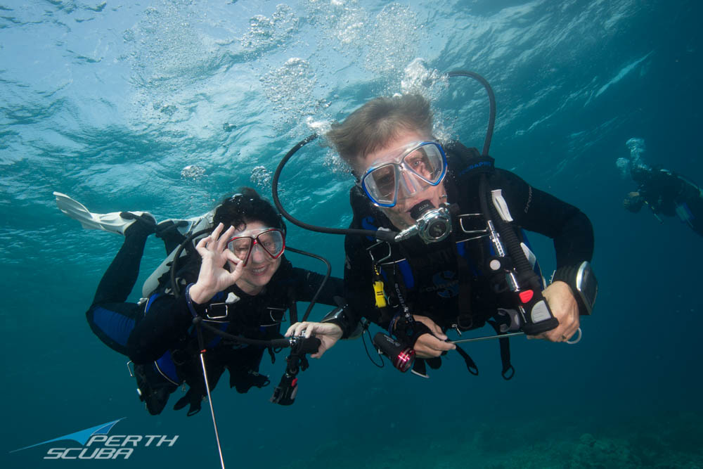 Discover Scuba Diving at Coogee Live 2020