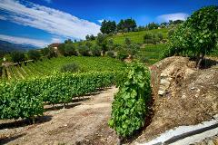 GREEN DOURO - Small Group