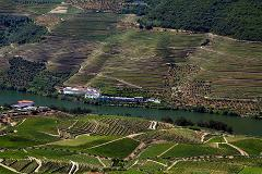 RELAX DOURO - ENJOY THE VALLEY