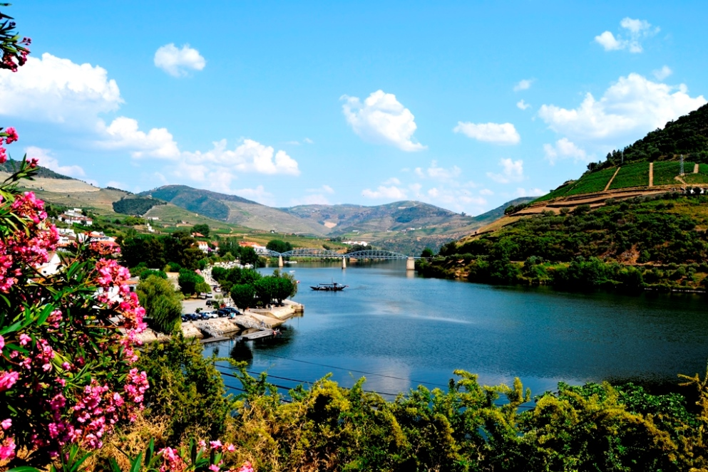 DOURO THE VALLEY OF PORT WINE - Small Group