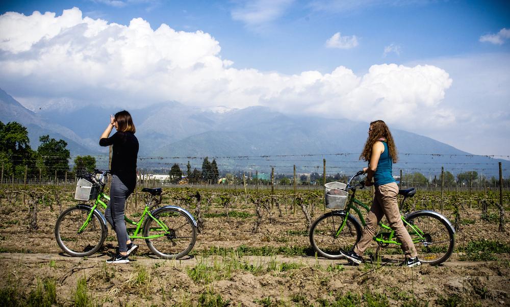 Private Bike and Wine Cousiño Macul // Tour Privado Bicicleta y Vino Cousiño Macul