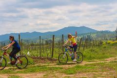 Private Bike and Wine Casablanca from Santiago // Tour Privado Bicicleta y Vino Casablanca desde Santiago