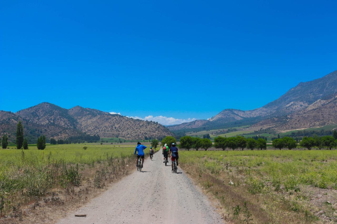 Semi-Private Santa Rita Bike and Wine // Semi - Privado Santa Rita Bici y Vino