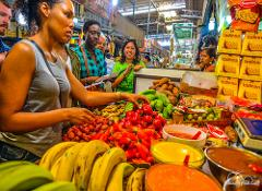 Private Local Life and Markets // Tour Privado Vida Local y Mercados