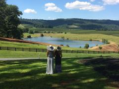 5 Hour Vineyard or Brewery Tour (6 people or less) Monday - Friday