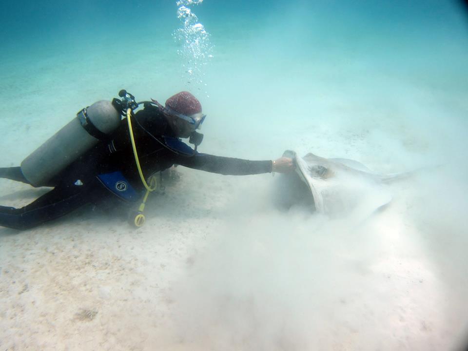 The Dive Shop - 4 Tank Dive