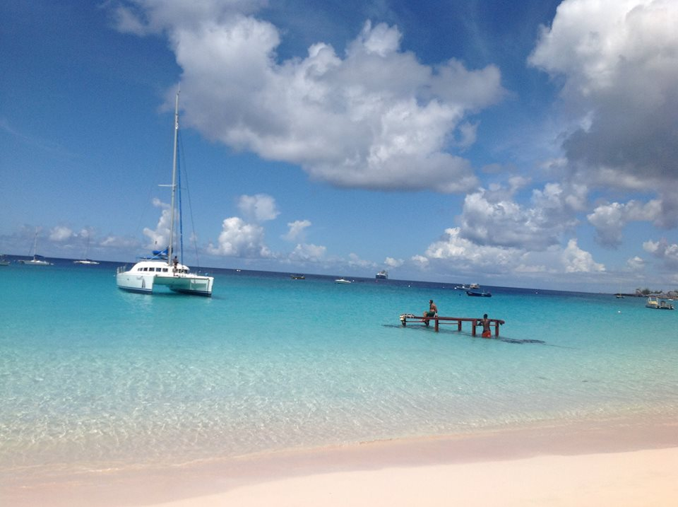 Elegance Catamaran - Swim the Turtles Cruise Lunch Cruise