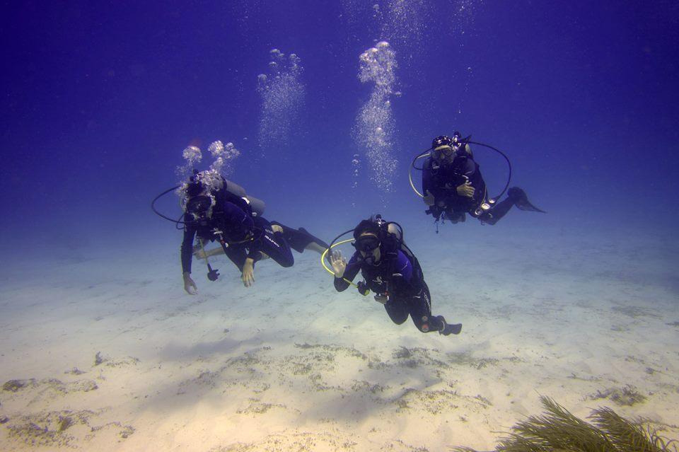 The Dive Shop - 10 Tank Dive