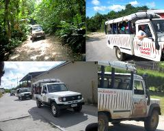 Island Safari - Discover Safari Tour - Half Day