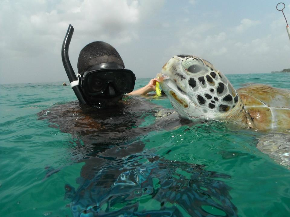 El Tigre - 3 hour Snorkelling Cruise