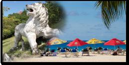 Island Safari - Surf & Turf Adventure