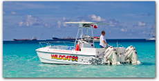 Wildcat/Thriller Private Group Tours