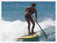 Paddle Barbados - Surfing Lesson