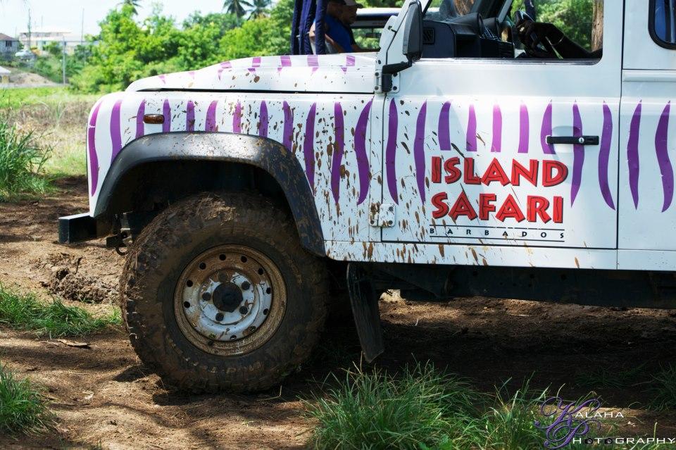 Island Safari - Tailor-Made Safari