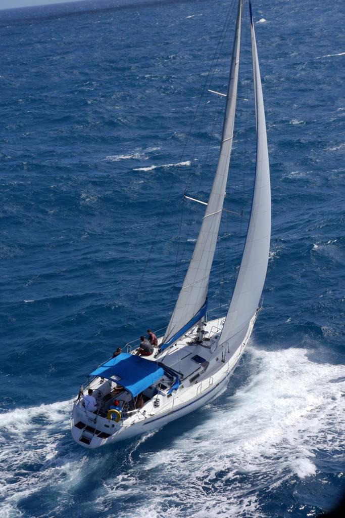 Blue Skies Cruises