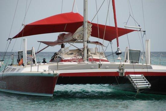 Stiletto IV Lunch Cruise
