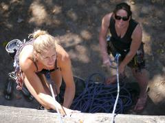 Intro Rock Climbing Course