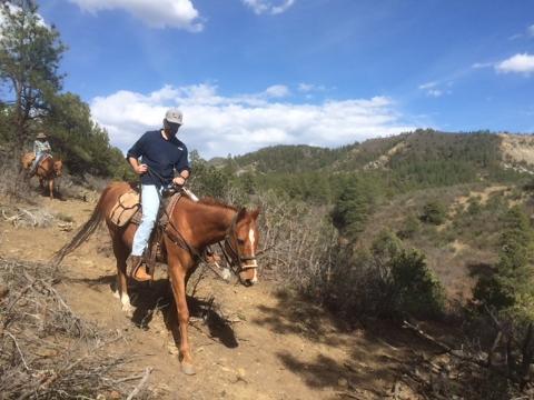 2 Hour Horseback Ride: Rincon Ridge Saddle
