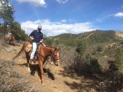 2 Hour Horseback Ride: Rincon Ridge Saddle
