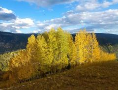 """""""Fall Color Ride"""" Overnight Packtrip"""