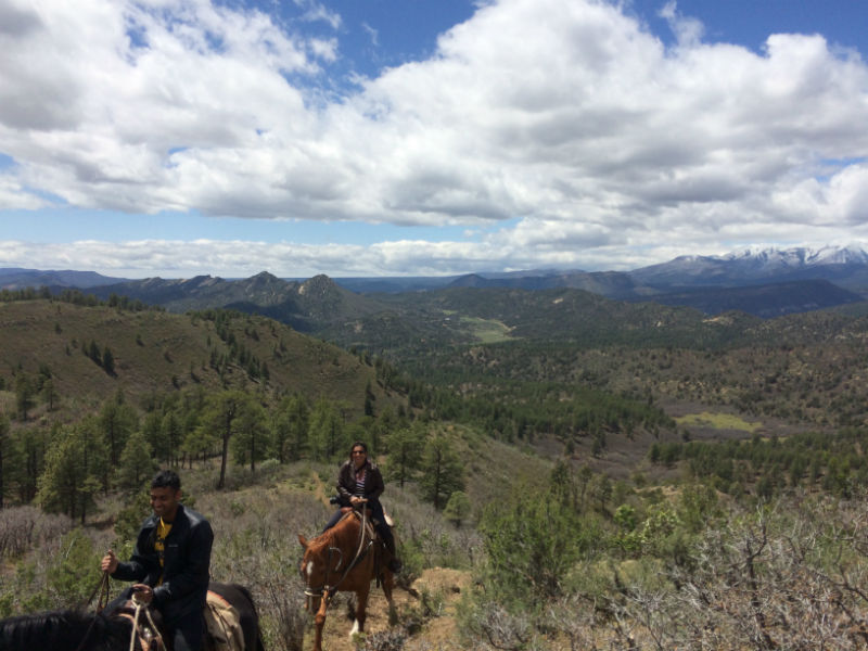1 Hour Horseback Ride: Ranch View Ridge