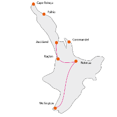 North Island Cities & Surfing Tour