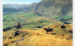 Horseback Riding Queenstown