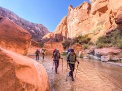 IWD Women's Adventure Hike