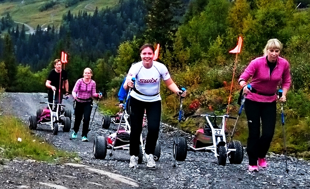 Hike & Trike with Mountain Cart