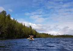 Canoe adventure with overnight stay