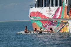 Adventure Boom Net Cruise