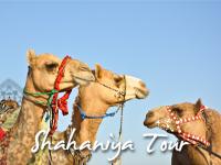 Shahaniya Tour