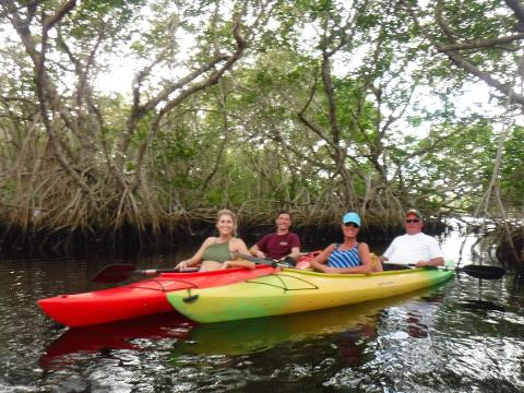 Manatee off season Eco Kayak Tour in Estero Bay - Mar 1 - Nov 30. Map sent to your e-mail