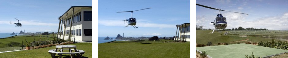 Okurukuru Winery Flight - Helicopter Flight